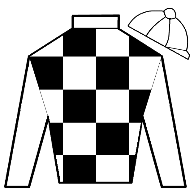 custom horse racing silks